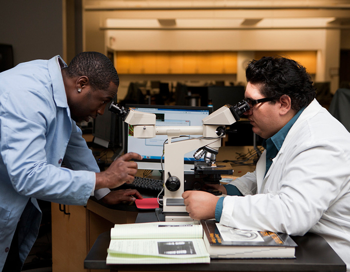 Two scientists at a microscope