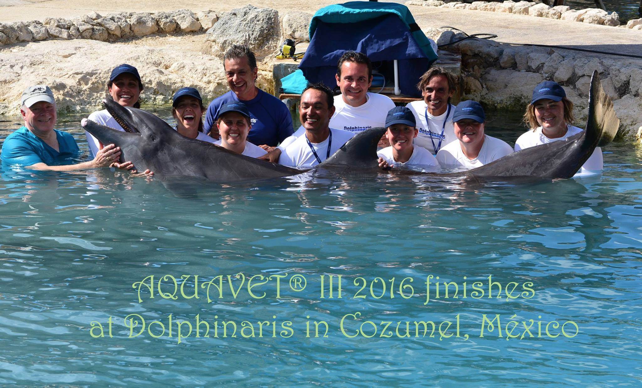 AQUAVET 2016 Class Photo