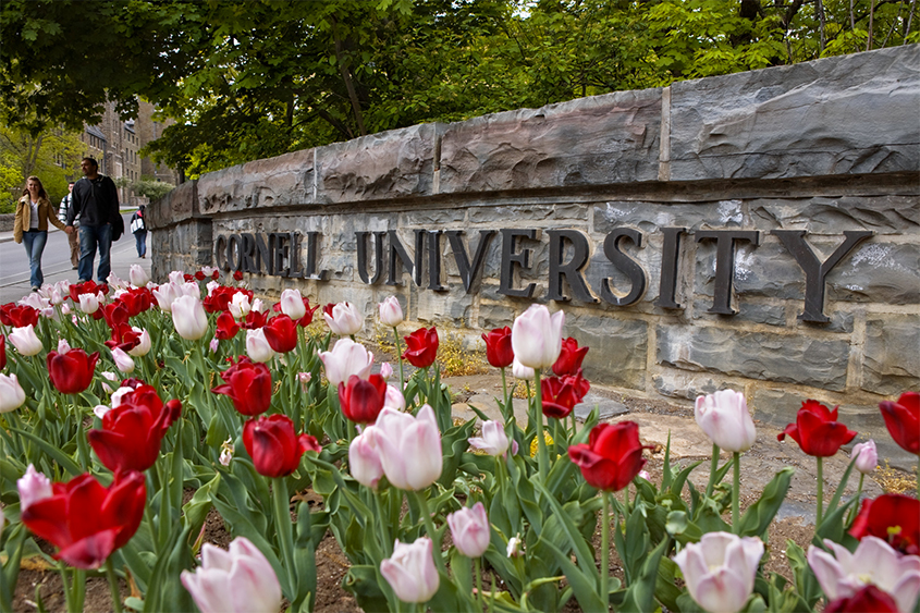 Spring flowers at the College Avenue entrance sign to the Cornell campus.