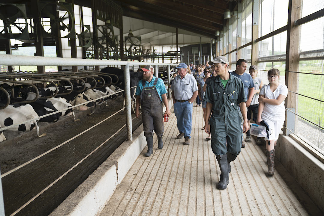Dr. Blake Nguyen leads a dairy barn tour