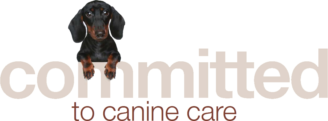Committed To Canine Care Cornell