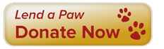 Lend a Paw - Donate Now button