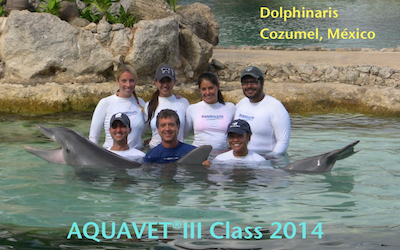 Fianl 2014 AQUAVET III class photo