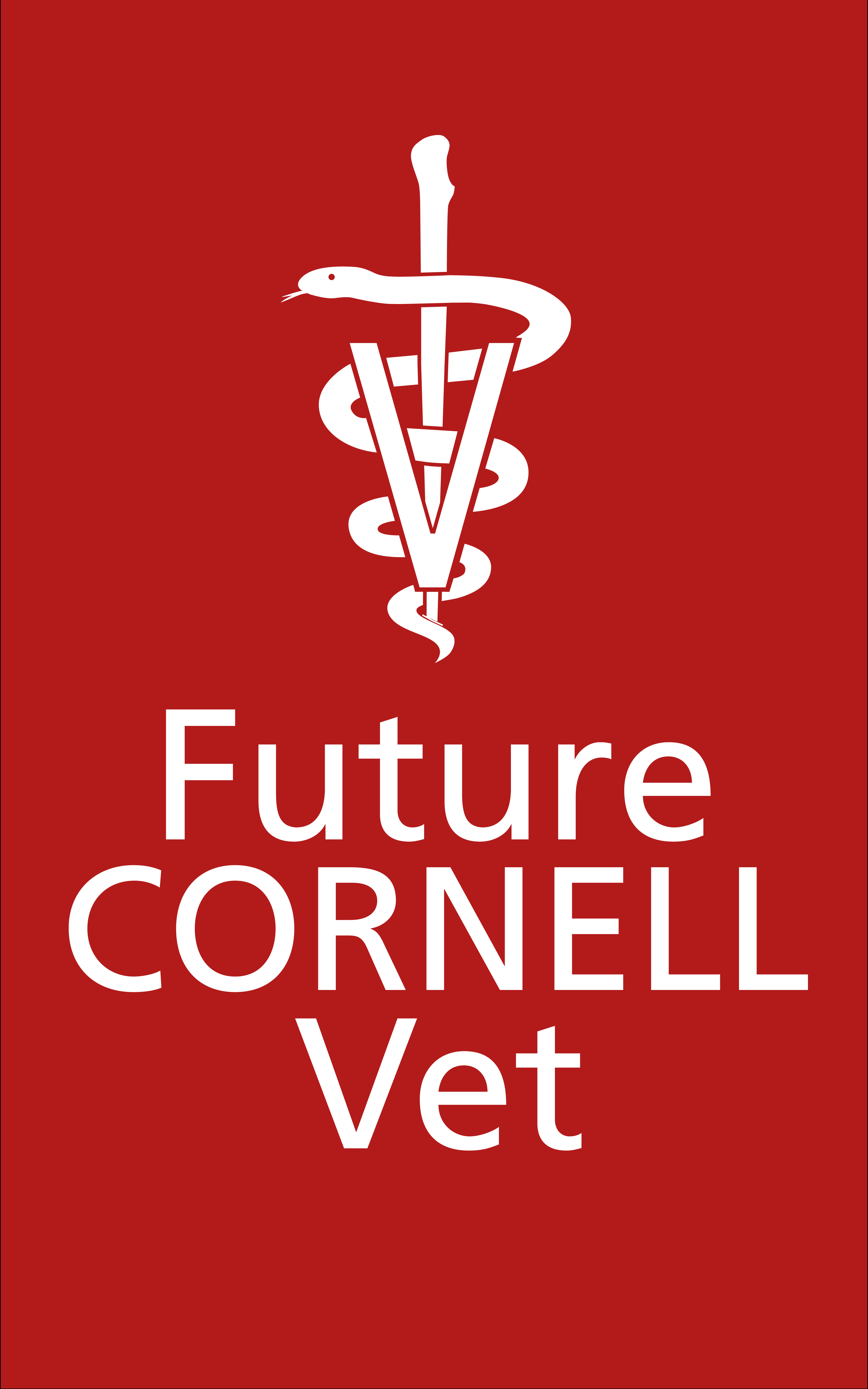 Future Cornell Vet Wallpaper