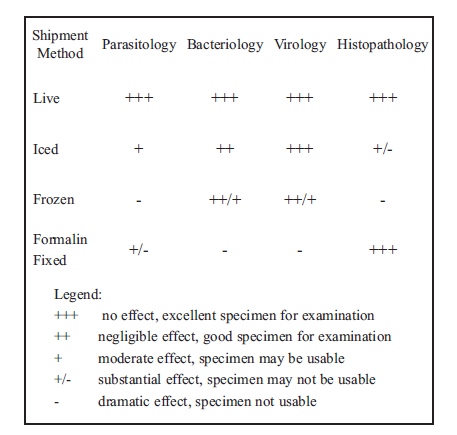 General Microbiology Multiple Choice Questions