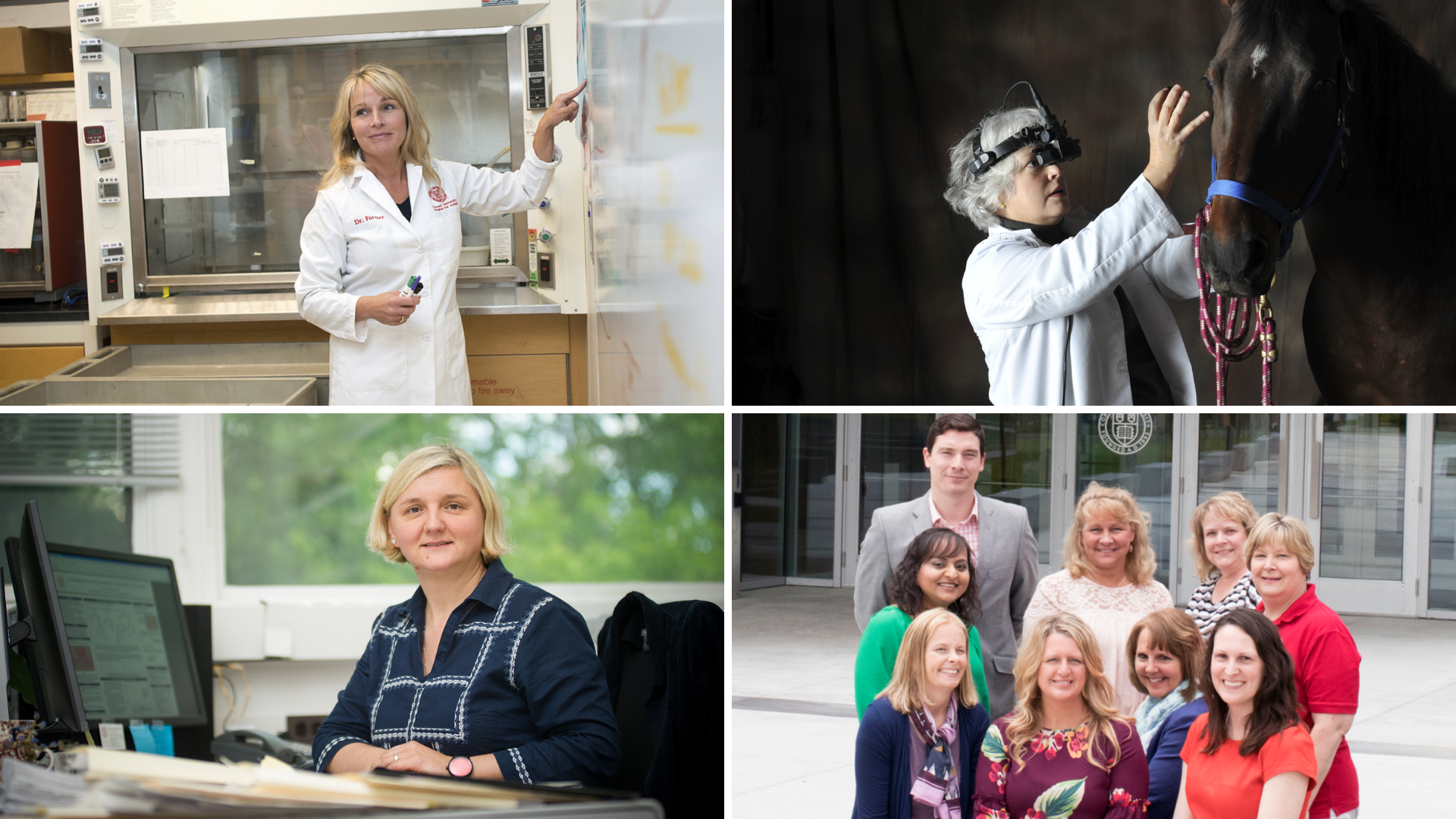Collage of winners, with Fortier in a lab coat, Irby examining a horse, Ivanek at a desk, and Patel with the HR team outside the entrance to the college