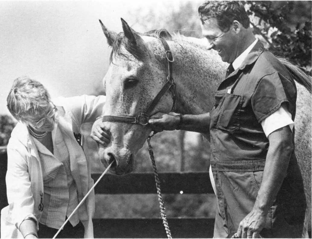Dorothy Holmes and Jack Lowe collecting a nasal sample from a horse