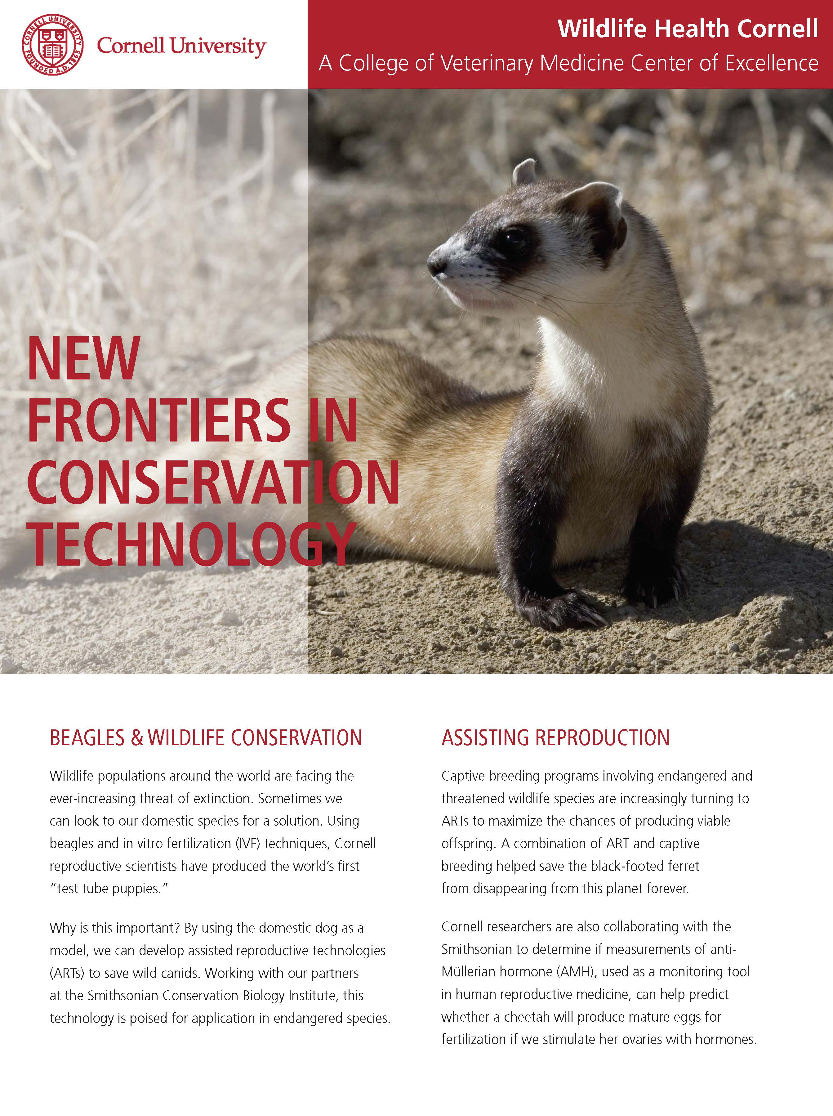 New Frontiers in Conservation Technology article cover