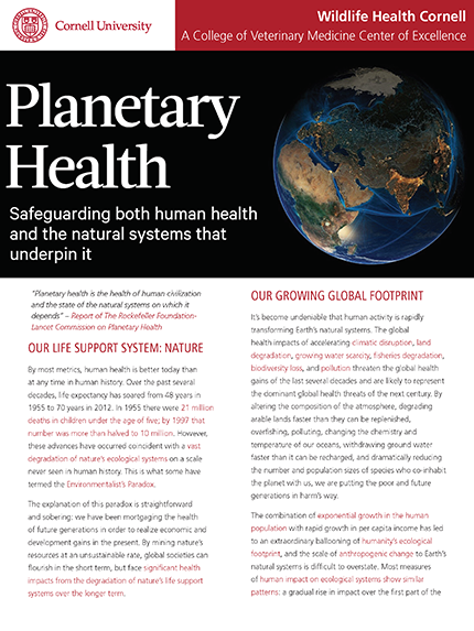 Planetary Health article cover