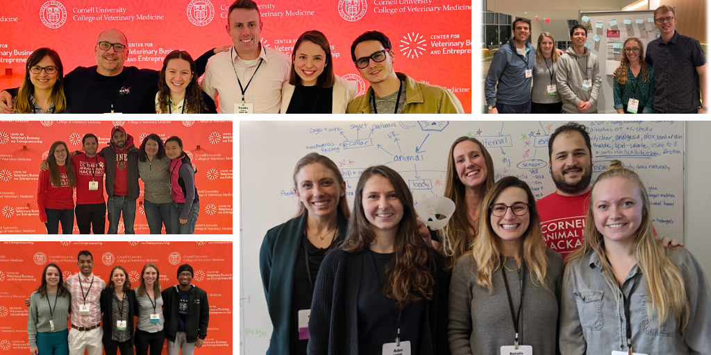A collage of five teams that won awards at this year's hackathon
