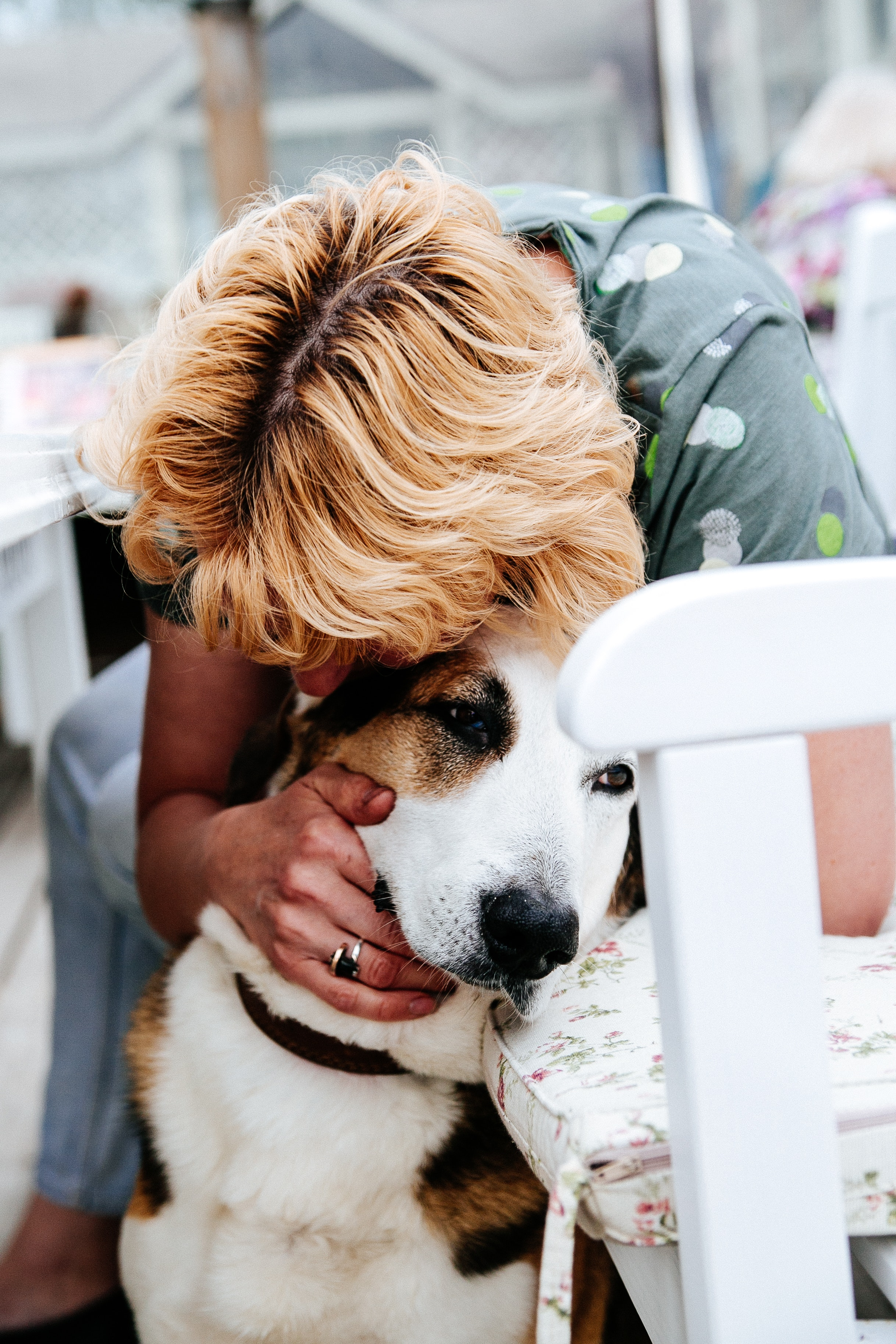A woman hugs a brown and white dog