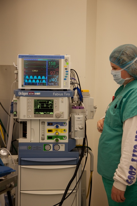 Anesthesia and Pain Medicine | Cornell University College of