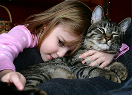 Young girl cuddling with tabby cat