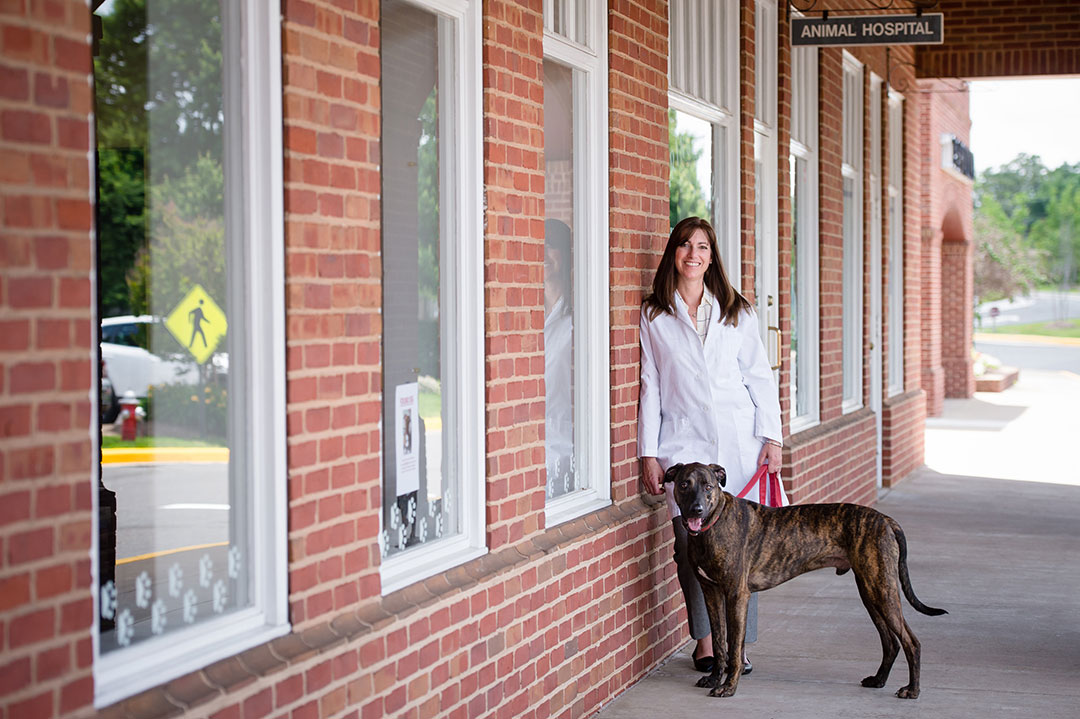 Veterinarians weigh the choice to stay small or join the
