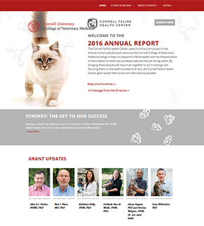 Online annual report screen shot