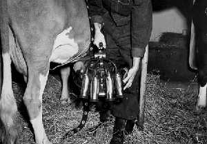 Milking maching 1948