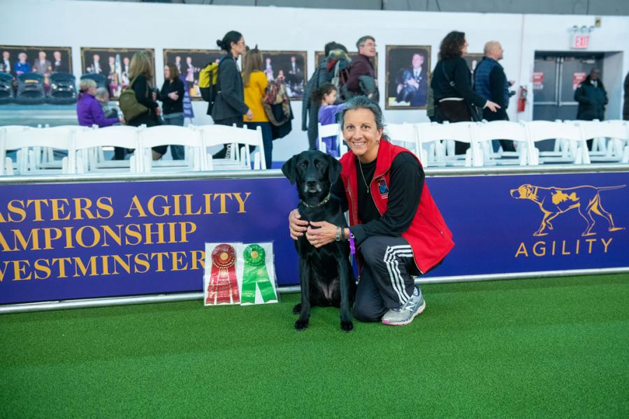 Alumna Liz Dole crouching next to her black Lab Chelsea at the agility competition