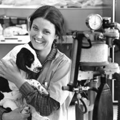 Circa mid 1980, a student holds a spaniel puppy near anesthesia equipment.