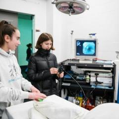 Guests drive the endoscope