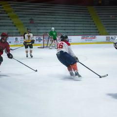 A wide shot of the hockey game