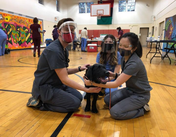 three students sitting around a black dog