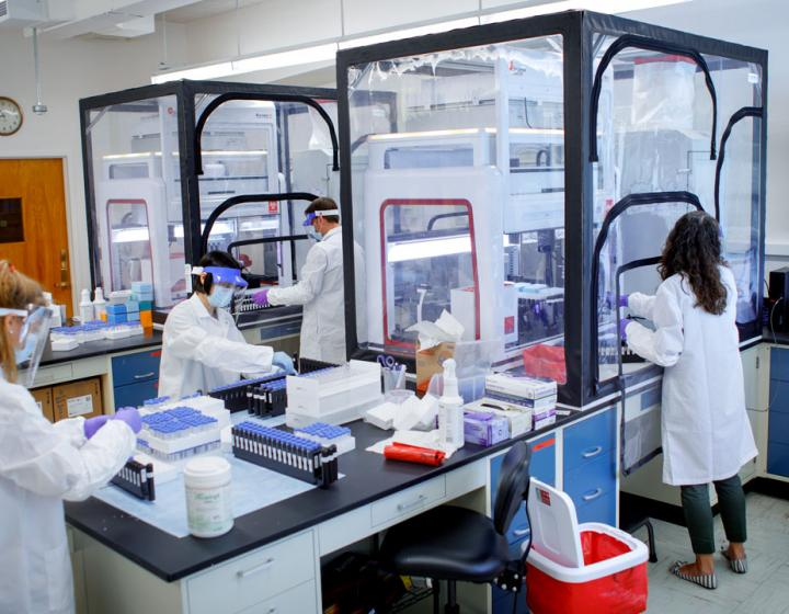 The Cornell COVID-19 Testing Laboratory, housed in the College of Veterinary Medicine, is a cornerstone of the university's plan to reactivate campus as safely and scientifically as possible.