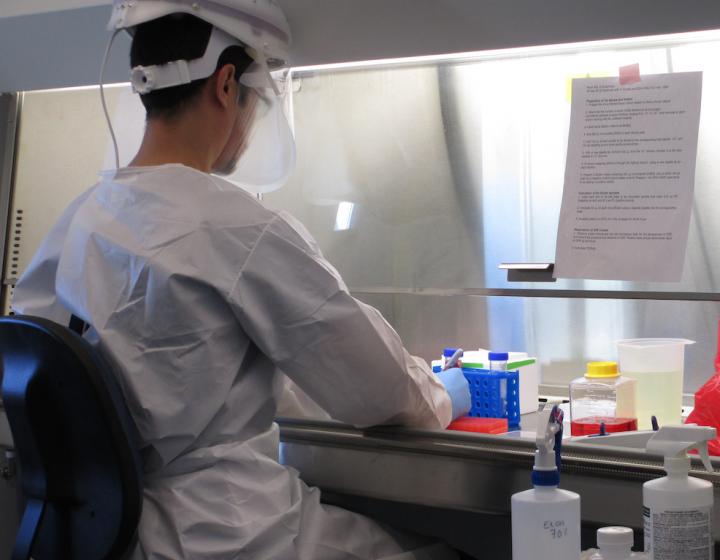 Worker in BLS3 lab