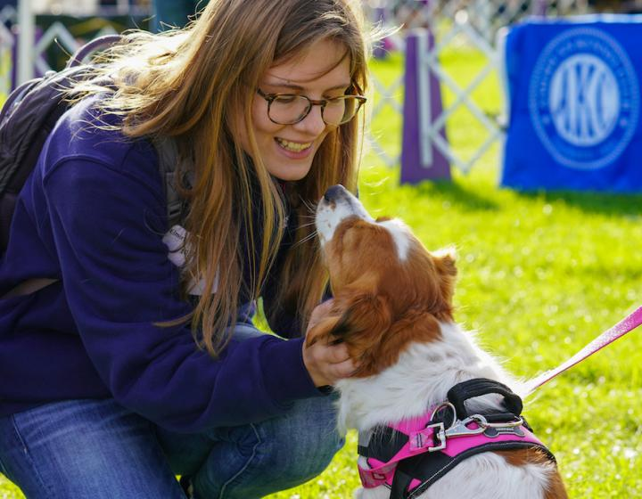A Cornell veterinary student greets a white and brown dog on a sunny day at the Wine Country Circuit dog show
