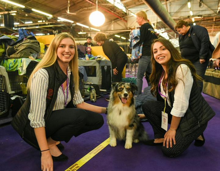 Two student pose with an Australian shepherd