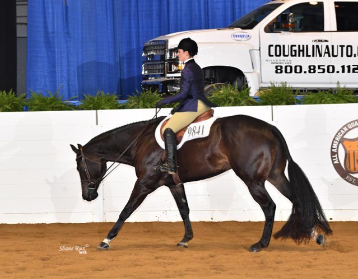 Nicolazzo riding Wrangler at a horse show