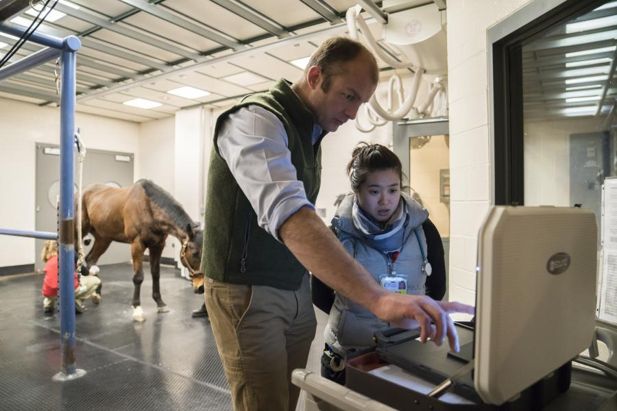 Dr. Jon Cheetham reviews an image on a screen with a student and a horse in the background.