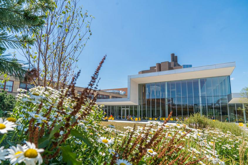 The interior courtyard of Cornell Vet, with flowers in the foreground and a glass building behind them