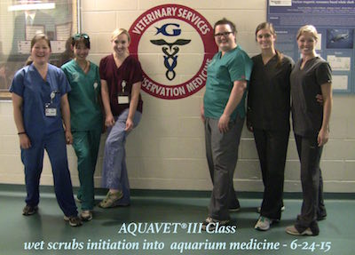 AQUAVET III wet scrubs 2015